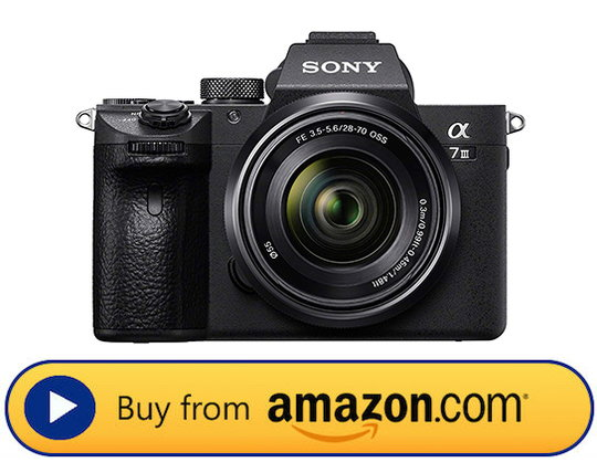 Top Cameras for 2019 6.jpg