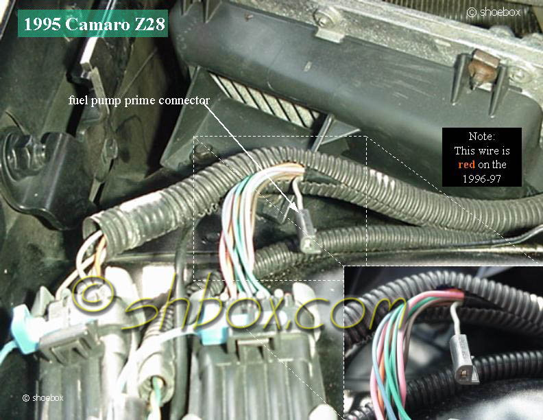Fuel pump not priming... - LS1TECH - Camaro and Firebird Forum DiscussionLS1Tech.com