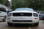 Mustang Majulius!