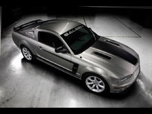 2007 ford mustang saleen1