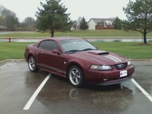 2004 40th anniversary mustang GT 290hp