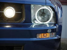 New Chrome CCFL Halo headlight housings with Sylvania SilverStars in Headlights and Fog lights.