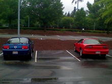 my stang and my best friends z28