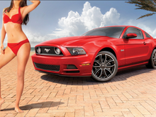 dalena henriques ford mustang 02