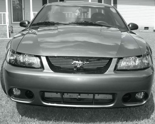 Cobra Bumper Front, No Color.