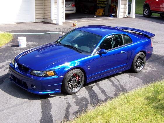 03 SVT Cobra w/2000 Cobra R hood (& other mods)