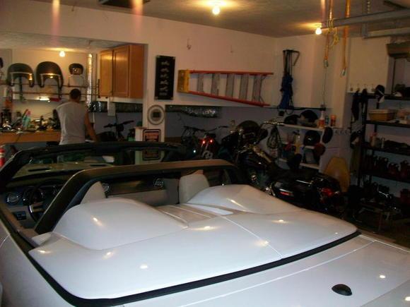 Mustang Stalker 019