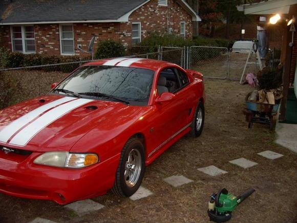 Mustang 006[4]
