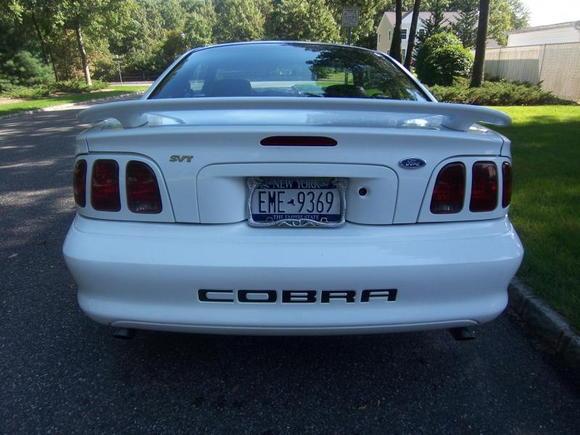 cobra back 2