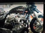 Harley dragster