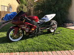 Zx10 drag bike