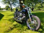 2001 dyna low rider