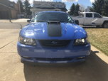 2003 Ford Mustang  for sale $42,900