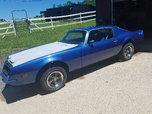 1974 Pontiac Firebird  for sale $6,800