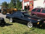 1981 Chevy Malibu  for sale $22,000