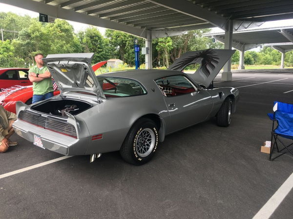 1979 PONTIAC FIREBIRD  for Sale $24,900