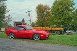 pumpkin 951