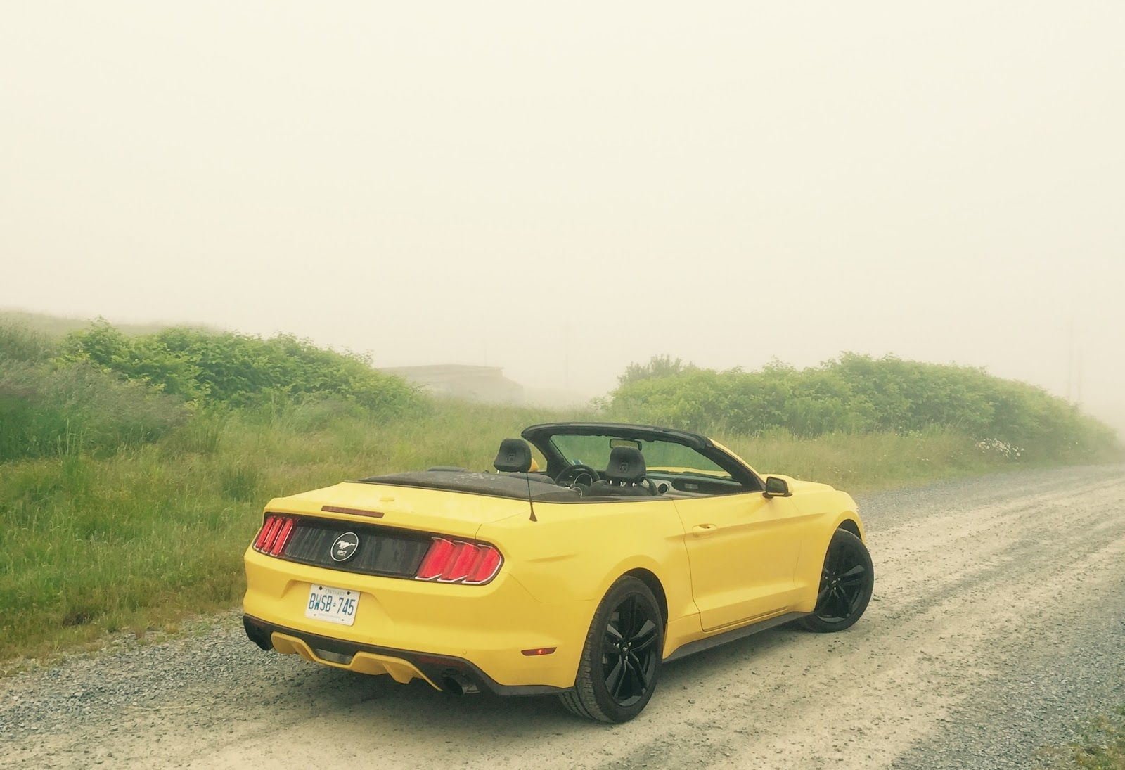 stubby antenna for 2015 gt