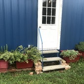 Our culinary herbs are planted in old square fiberglass sinks that we painted.