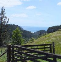 Golden Valley, NZ looking down to Mataroa Bay