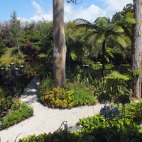 Path to the Water Lily Ponds