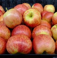 Apple 'Smitten'
