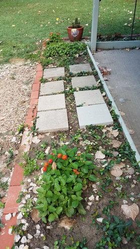 2nd half, L-shape patio plant border.