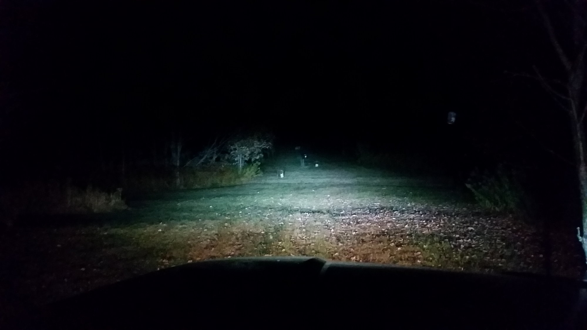 Do Low Beams Stay On With High Beams  - Ford F150 Forum