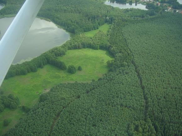 my meadow...