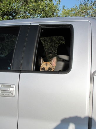 Nikki loves the roll down windows in the back. She thinks the power slider is pretty neat, too!
