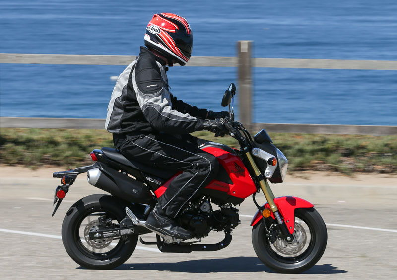 Honda Grom In A Honda Fit Unofficial Honda Fit Forums