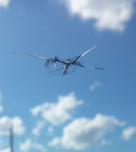Safelite Quote: Thud And I Have Little Chip In Windshield