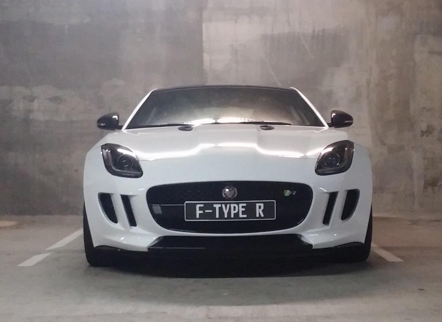 For 10-15 Jaguar XFR-S /& XFR Front Bumper Tow Hook License Plate Bracket Mount