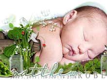 Untitled Album by MommaTrish - 2011-06-09 00:00:00