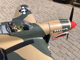 For Sale | Giant P-40 Warhawk RTF Top Flite