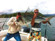 Big rooster La Vida Costa Rica Fishing