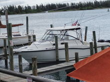 Boston Whaler - Small