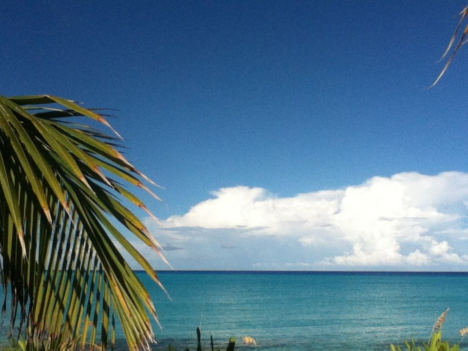 Bimini sands oceanfront two bed condo for sale - The Hull