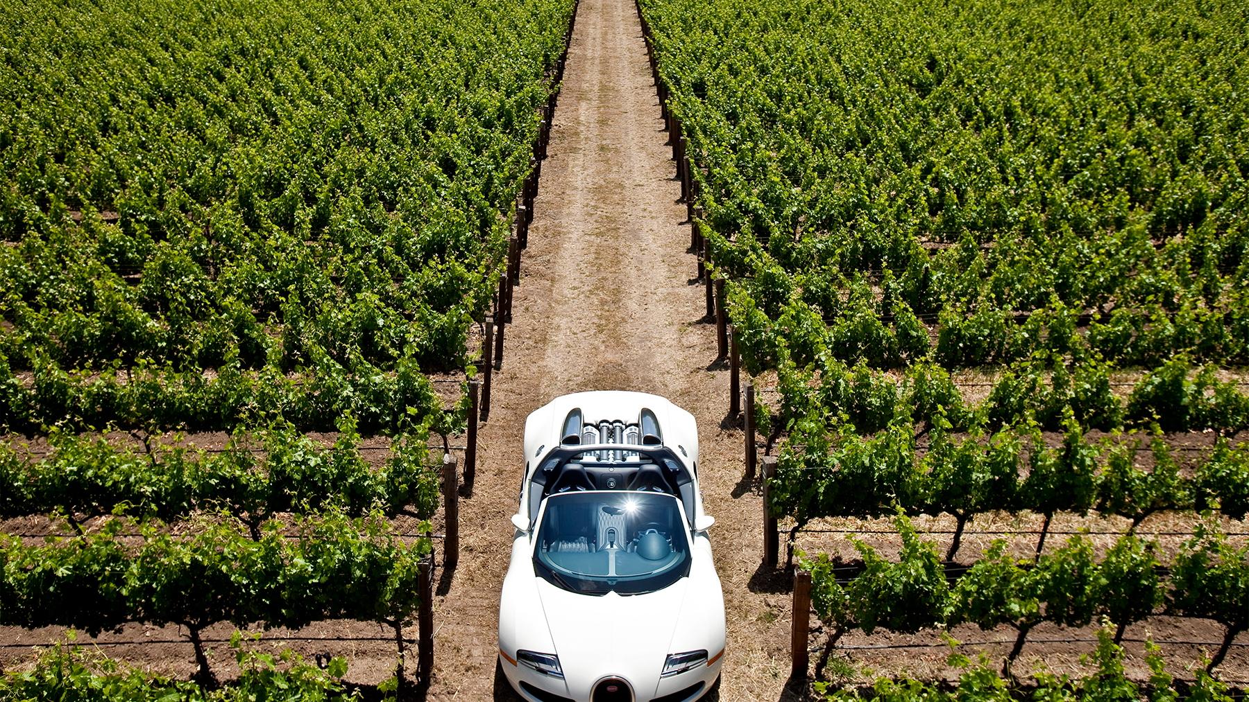 bugatti veyron grand sport napa valley 018