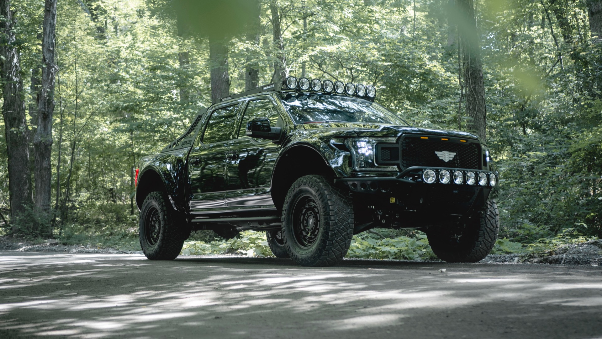 Mil-Spec Automotive Intrepid Ford F-150