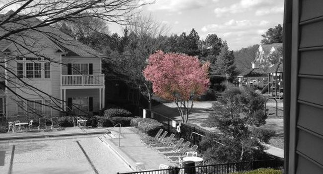 Shiloh Green - 174 Reviews | Kennesaw, GA Apartments for